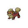 Dark Growlithe