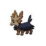 Dark Herdier