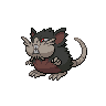 dark raticate (alolan)