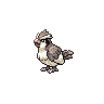 Metallic Pidgey