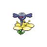Shadow Flabebe (Yellow)