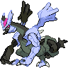 shiny kyurem (black)