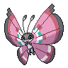 Vivillon (Meadow)